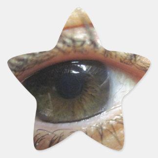 Otros observan pegatina en forma de estrella