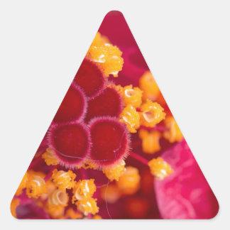 Otros que abren otros demostración pegatina triangular
