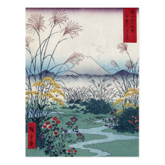 Otsuki coloca por Hiroshige, japonés del vintage Tarjetas Postales