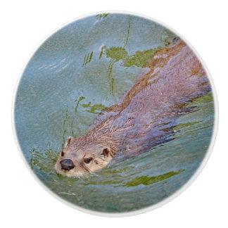 Otter 201 ceramic knob