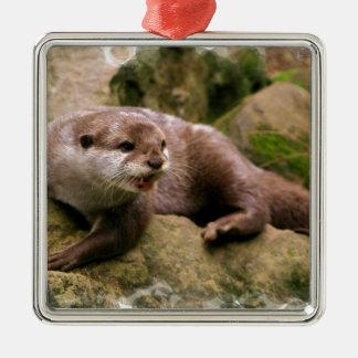 otter-83.jpg christmas ornament