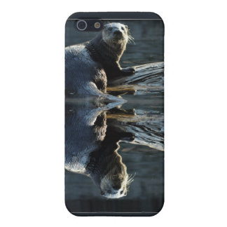 Otter Beauty Wild Otter Photo iPhone 4 Case