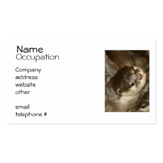 Otter Business Card Template