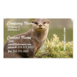 Otter Business Cards