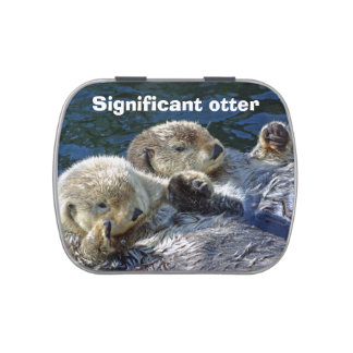 Otter candy tin