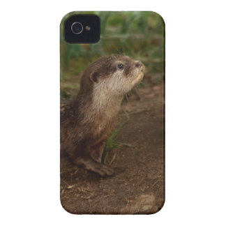 Otter iPhone 4 Cover