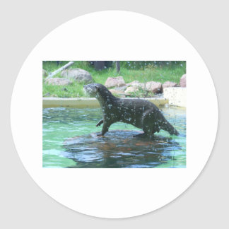 Otter Classic Round Sticker