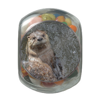 Otter Flip Turns Jelly Belly Candy Jar