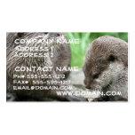 Otter Habitat Business Card