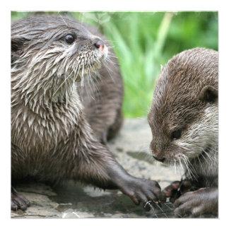 Otter Habitat Inviations Invitations