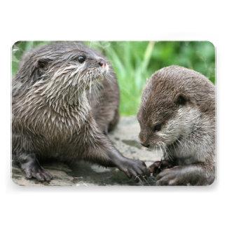 Otter Habitat Announcement