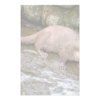 Otter in Spey Valley, Highland of Scotland Stationery Paper