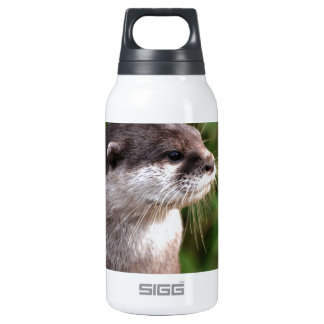 Otter Insulated Water Bottle