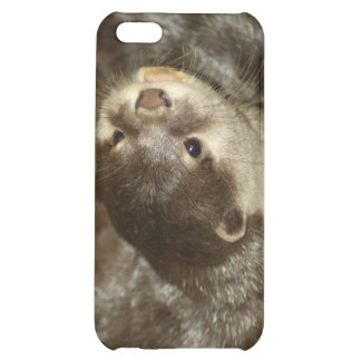 Otter Case For iPhone 5C