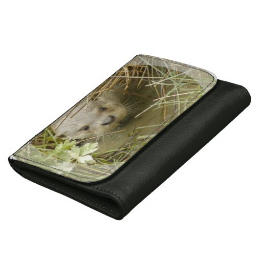 Otter Leather Wallet For Women