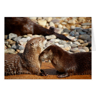 Otter Love Greeting Cards