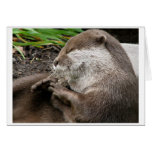Otter-ly Amazing Holidays Greeting Card
