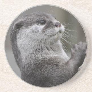 Otter Mastermind Coaster