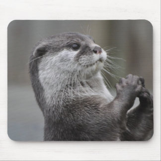 Otter Mastermind Mouse Pad