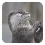 Otter Mastermind Stickers