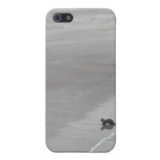 Otter on a beach in Ireland. iPhone SE/5/5s Case