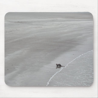 Otter on a beach in Ireland. Mouse Pad