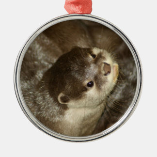 Otter Christmas Tree Ornament