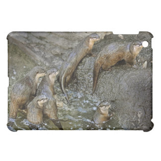 Otter Pack  Cover For The iPad Mini