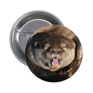 Otter photo pinback buttons