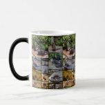 Otter Photo Collage, Magic Morph Mug. Magic Mug