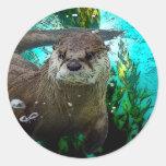 Otter Portrait Classic Round Sticker