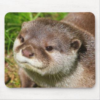Otter Portrait....... Mouse Pad