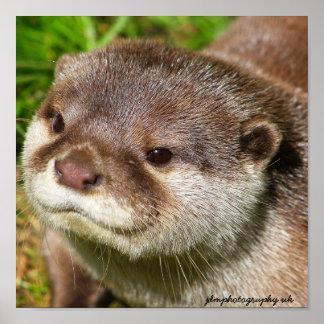 Otter Portrait Posters