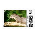 Otter Postage