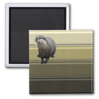 Otter Pride Magnet