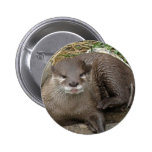 Otter Resting Button
