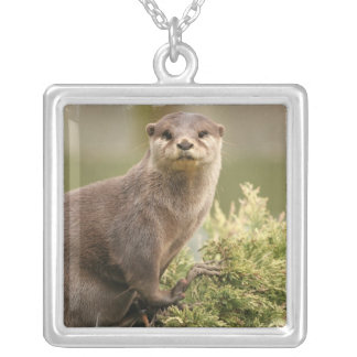 Otter Silver Necklace