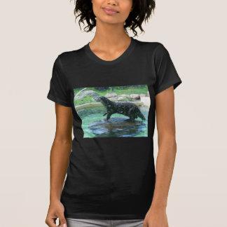 Otter T-shirts