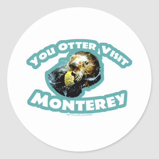 Otter visit Monterey Classic Round Sticker
