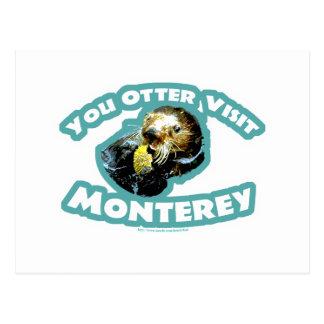Otter visit Monterey Postcard
