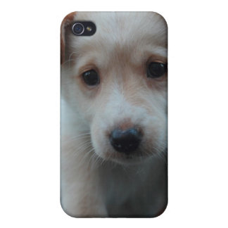 Otterbox for puppy covers for iPhone 4