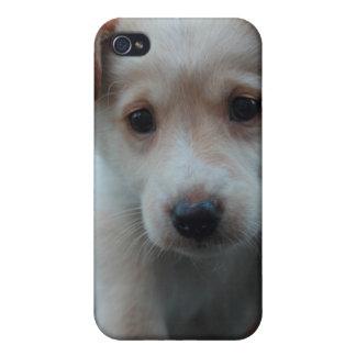 Otterbox para el perrito iPhone 4/4S fundas