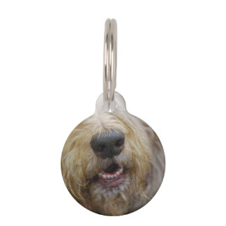 Otterhound Pet Tag
