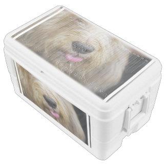 Otterhound Igloo Ice Chest