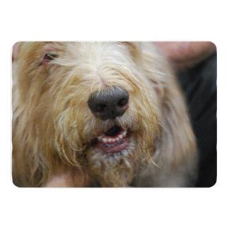 Otterhound 5x7 Paper Invitation Card