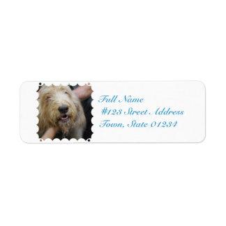 Otterhound Return Address Label