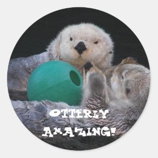 Otterly Amazing Sea Otters Photo Classic Round Sticker