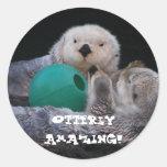 Otterly Amazing Sea Otters Round Sticker