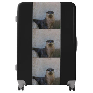 Otterly cute suitcase
