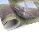 Otterly en papel de embalaje del amor